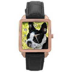 Boston Terrier Puppy Rose Gold Leather Watch