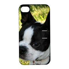 Boston Terrier Puppy Apple iPhone 4/4S Hardshell Case with Stand