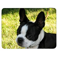 Boston Terrier Puppy Samsung Galaxy Tab 7  P1000 Flip Case