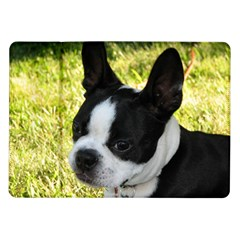 Boston Terrier Puppy Samsung Galaxy Tab 10.1  P7500 Flip Case
