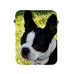 Boston Terrier Puppy Apple iPad 2/3/4 Protective Soft Cases