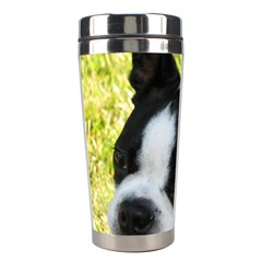 Boston Terrier Puppy Stainless Steel Travel Tumblers
