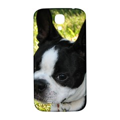 Boston Terrier Puppy Samsung Galaxy S4 I9500/I9505  Hardshell Back Case