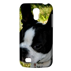 Boston Terrier Puppy Galaxy S4 Mini