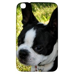 Boston Terrier Puppy Samsung Galaxy Tab 3 (8 ) T3100 Hardshell Case
