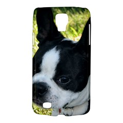 Boston Terrier Puppy Galaxy S4 Active