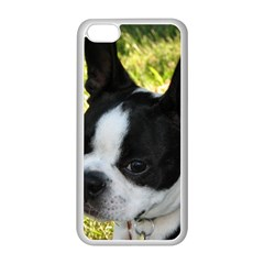Boston Terrier Puppy Apple iPhone 5C Seamless Case (White)