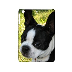 Boston Terrier Puppy iPad Mini 2 Hardshell Cases