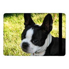Boston Terrier Puppy Samsung Galaxy Tab Pro 10.1  Flip Case