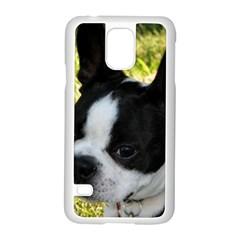 Boston Terrier Puppy Samsung Galaxy S5 Case (White)
