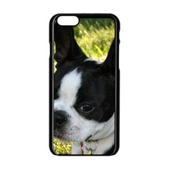 Boston Terrier Puppy Apple iPhone 6/6S Black Enamel Case