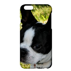 Boston Terrier Puppy Apple iPhone 6 Plus/6S Plus Hardshell Case