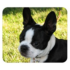 Boston Terrier Puppy Double Sided Flano Blanket (Small)
