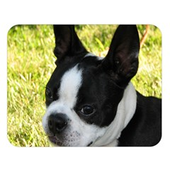 Boston Terrier Puppy Double Sided Flano Blanket (Large)