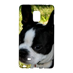 Boston Terrier Puppy Galaxy Note Edge