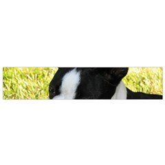 Boston Terrier Puppy Flano Scarf (Small)