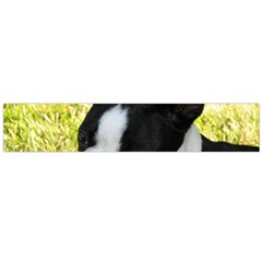 Boston Terrier Puppy Flano Scarf (Large)