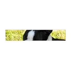 Boston Terrier Puppy Flano Scarf (Mini)