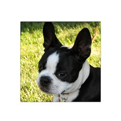 Boston Terrier Puppy Satin Bandana Scarf