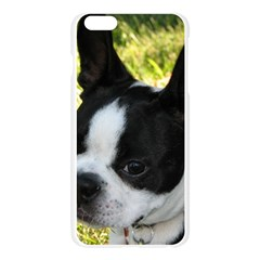 Boston Terrier Puppy Apple Seamless iPhone 6 Plus/6S Plus Case (Transparent)