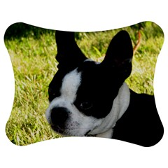 Boston Terrier Puppy Jigsaw Puzzle Photo Stand (Bow)