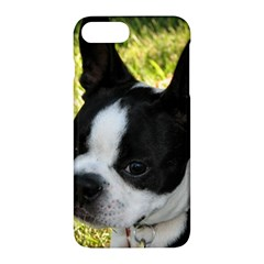 Boston Terrier Puppy Apple iPhone 7 Plus Hardshell Case