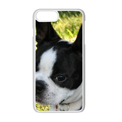Boston Terrier Puppy Apple iPhone 7 Plus White Seamless Case