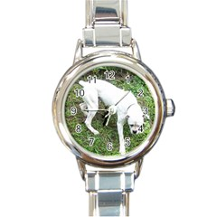 Boxer White Puppy Full Round Italian Charm Watch