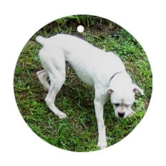 Boxer White Puppy Full Ornament (Round)