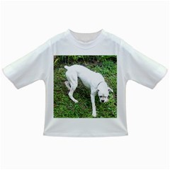 Boxer White Puppy Full Infant/Toddler T-Shirts