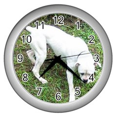 Boxer White Puppy Full Wall Clocks (Silver)