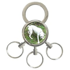 Boxer White Puppy Full 3-Ring Key Chains