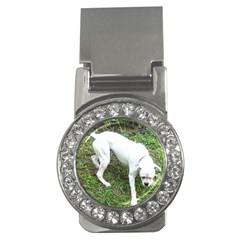 Boxer White Puppy Full Money Clips (CZ)