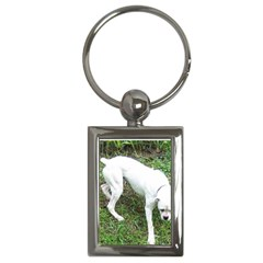 Boxer White Puppy Full Key Chains (Rectangle)