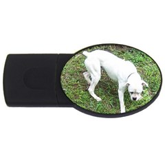 Boxer White Puppy Full USB Flash Drive Oval (1 GB)