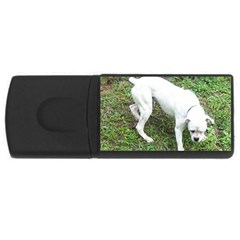 Boxer White Puppy Full USB Flash Drive Rectangular (2 GB)