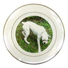 Boxer White Puppy Full Porcelain Plates