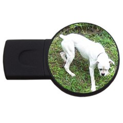 Boxer White Puppy Full USB Flash Drive Round (4 GB)