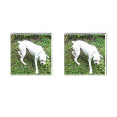 Boxer White Puppy Full Cufflinks (Square)
