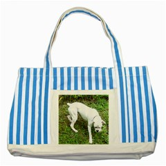 Boxer White Puppy Full Striped Blue Tote Bag