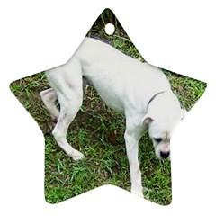 Boxer White Puppy Full Star Ornament (Two Sides)