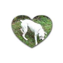Boxer White Puppy Full Rubber Coaster (Heart)