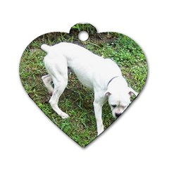 Boxer White Puppy Full Dog Tag Heart (Two Sides)