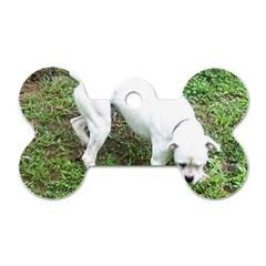 Boxer White Puppy Full Dog Tag Bone (Two Sides)