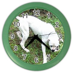 Boxer White Puppy Full Color Wall Clocks