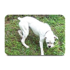 Boxer White Puppy Full Plate Mats
