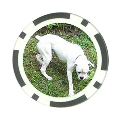 Boxer White Puppy Full Poker Chip Card Guards