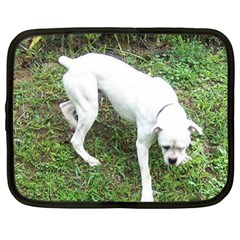 Boxer White Puppy Full Netbook Case (Large)