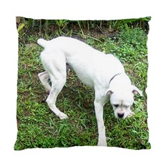 Boxer White Puppy Full Standard Cushion Case (One Side)
