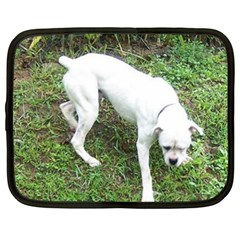 Boxer White Puppy Full Netbook Case (XXL)